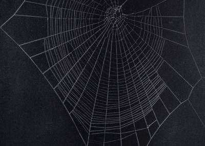 1954-Scientific-American-3