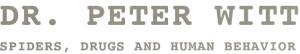 Peter N Witt - Header Image