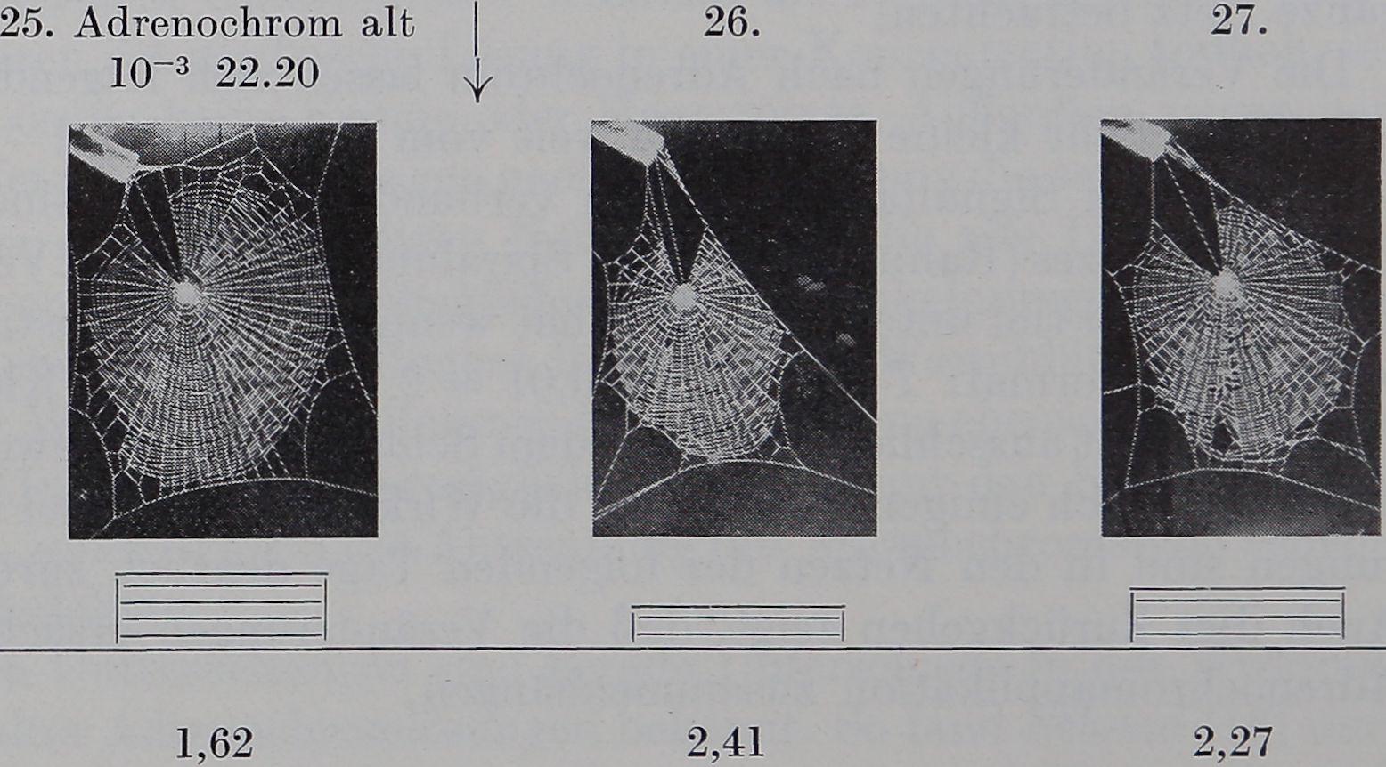 1954-Ein-Biologischer-6
