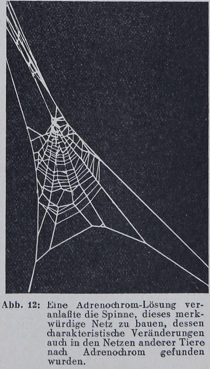 1956-Der-Netzbau-11