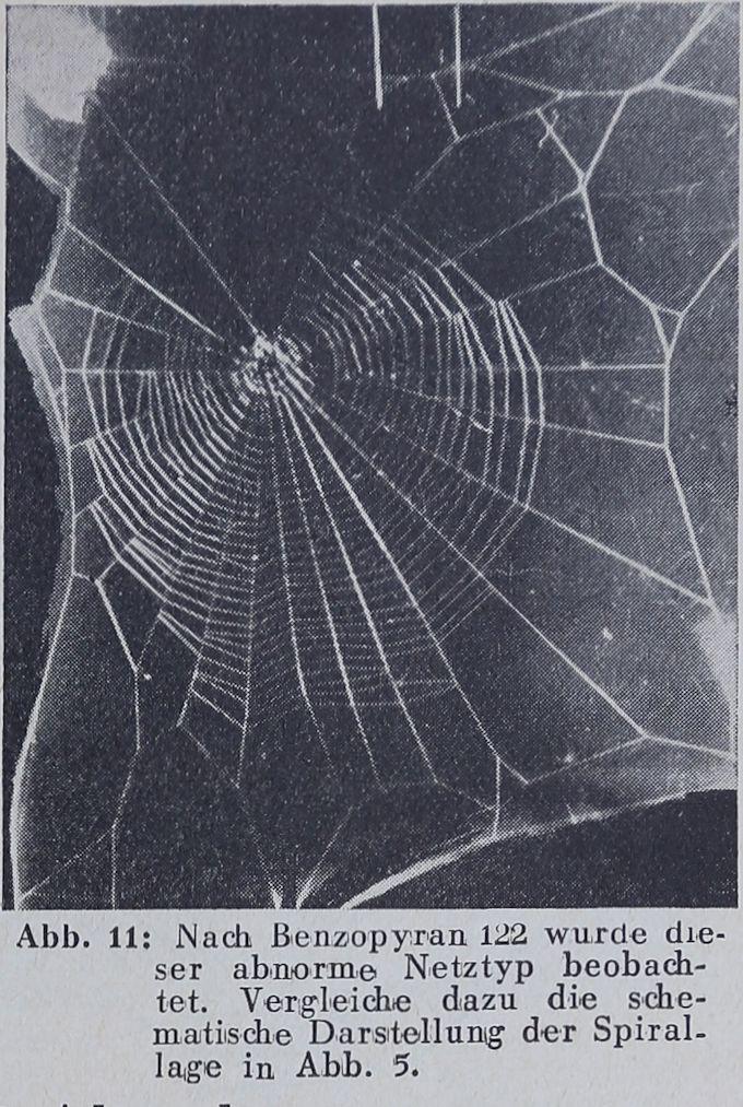 1956-Der-Netzbau-12