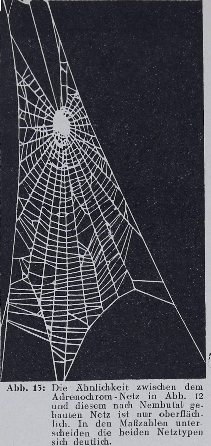 1956-Der-Netzbau-13