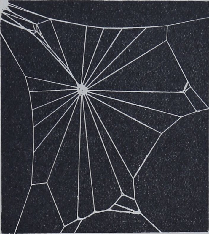 1956-Der-Netzbau-2