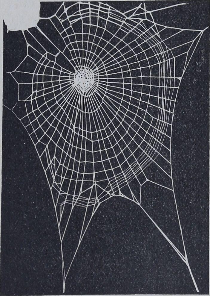1956-Der-Netzbau-3