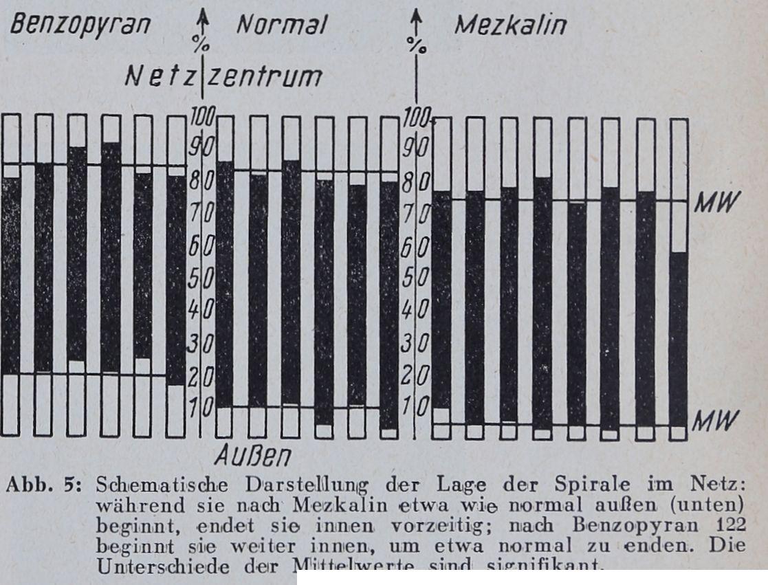 1956-Der-Netzbau-5