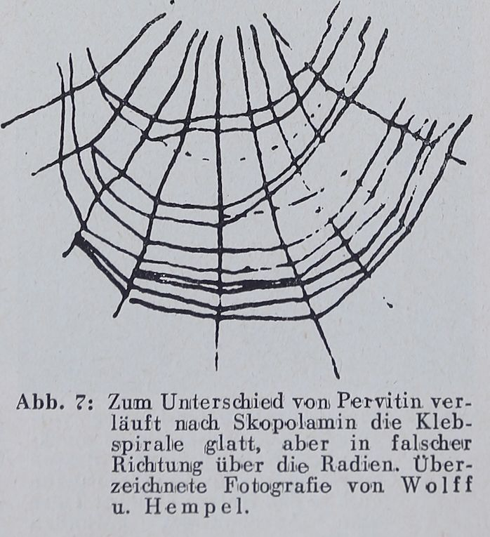 1956-Der-Netzbau-7