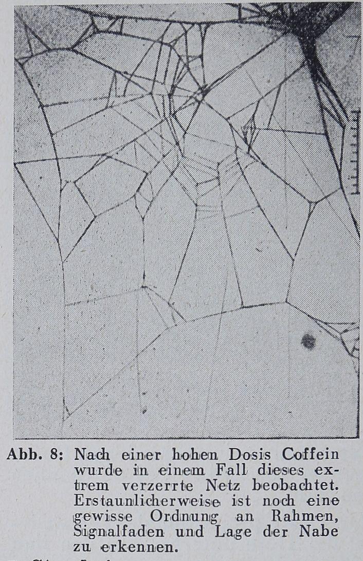 1956-Der-Netzbau-8