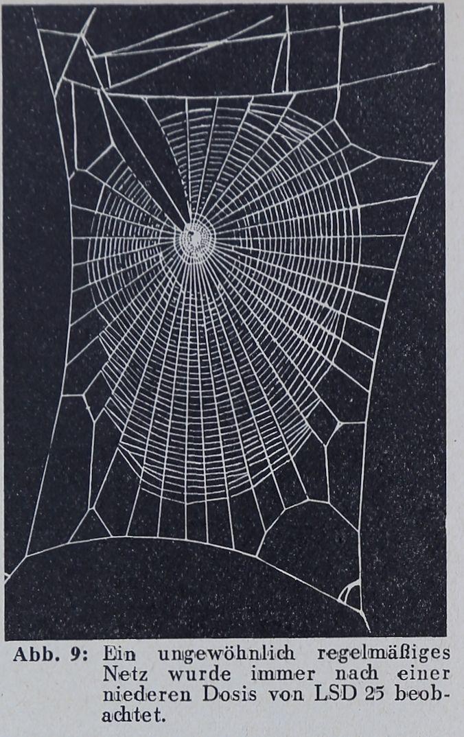 1956-Der-Netzbau-9