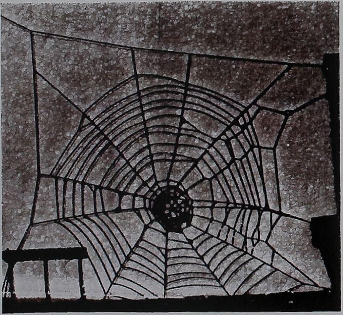 1957-Spider-Web-Reveals-3