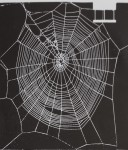 CHANGES IN SPIDER WEBS BROUGHT ABOUT BY MESCALINE…<br><strong>Reprinted from The Journal of Pharmacology and Experimental Therapeutics</strong>