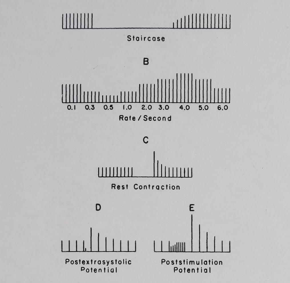 1963-CardiacGlycosidesAndCalcium-4