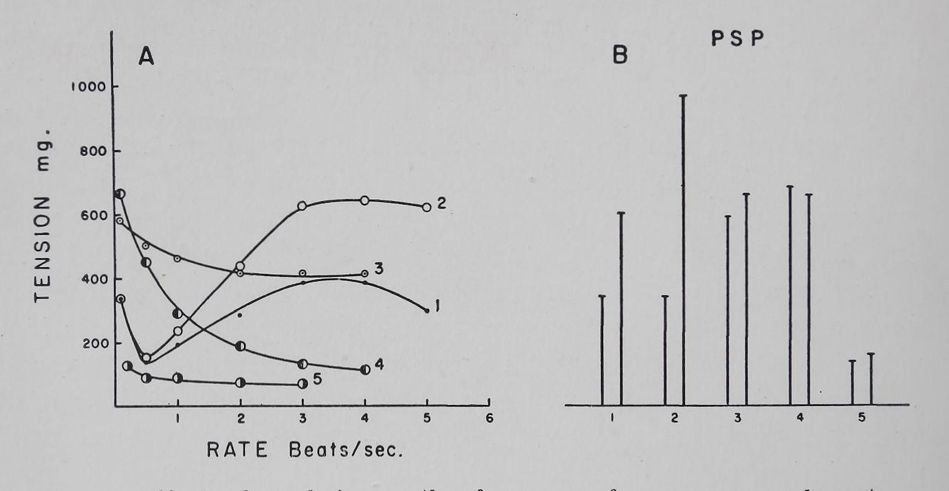 1963-CardiacGlycosidesAndCalcium-5