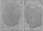 Their Brains Cooked, Spiders Weave Woeful Webs for Science<br><strong>New York Herald Tribune</strong>