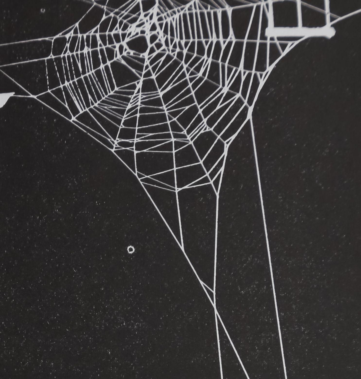 1965-TheMeasuringFunction0-9