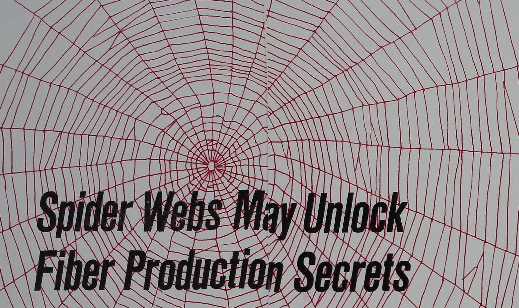 1967-Spider-Webs-May-Unlock-1