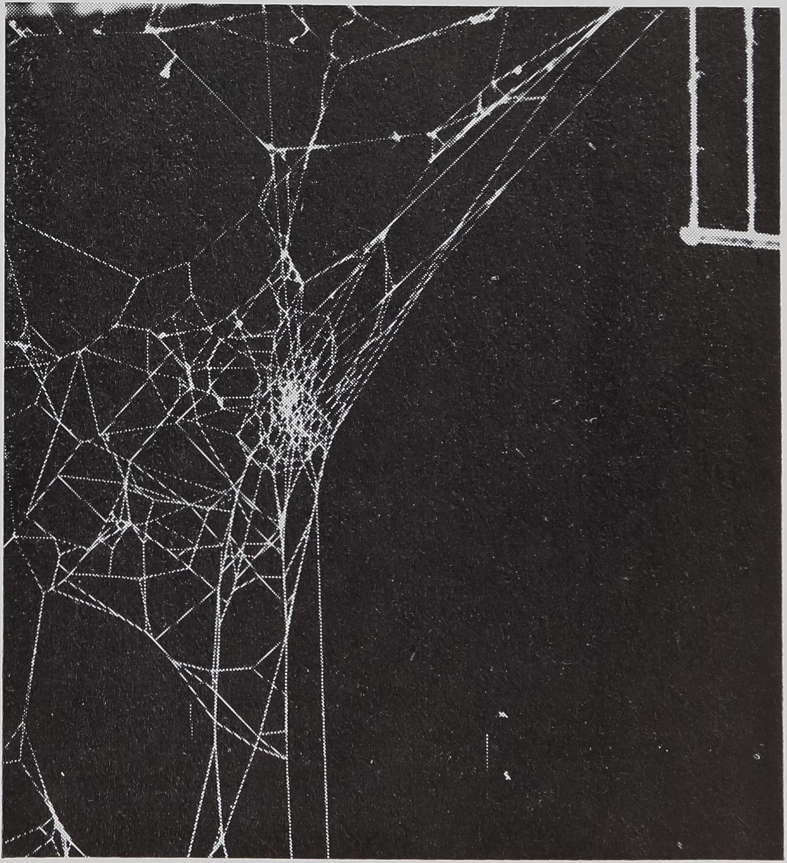 1971-BehavioralScienceTheBiology-3