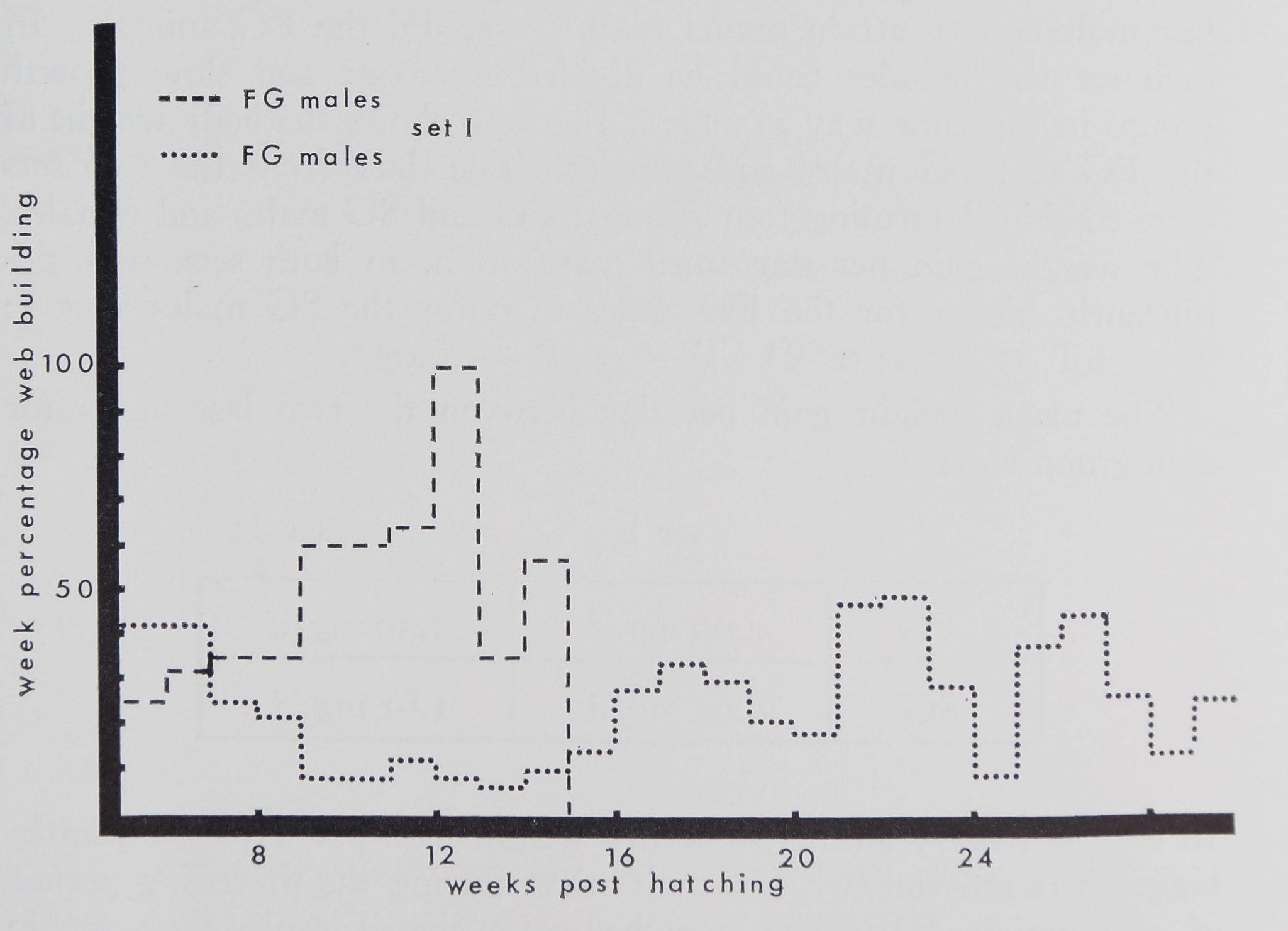 1973-BodyWebBuildingAnd-3