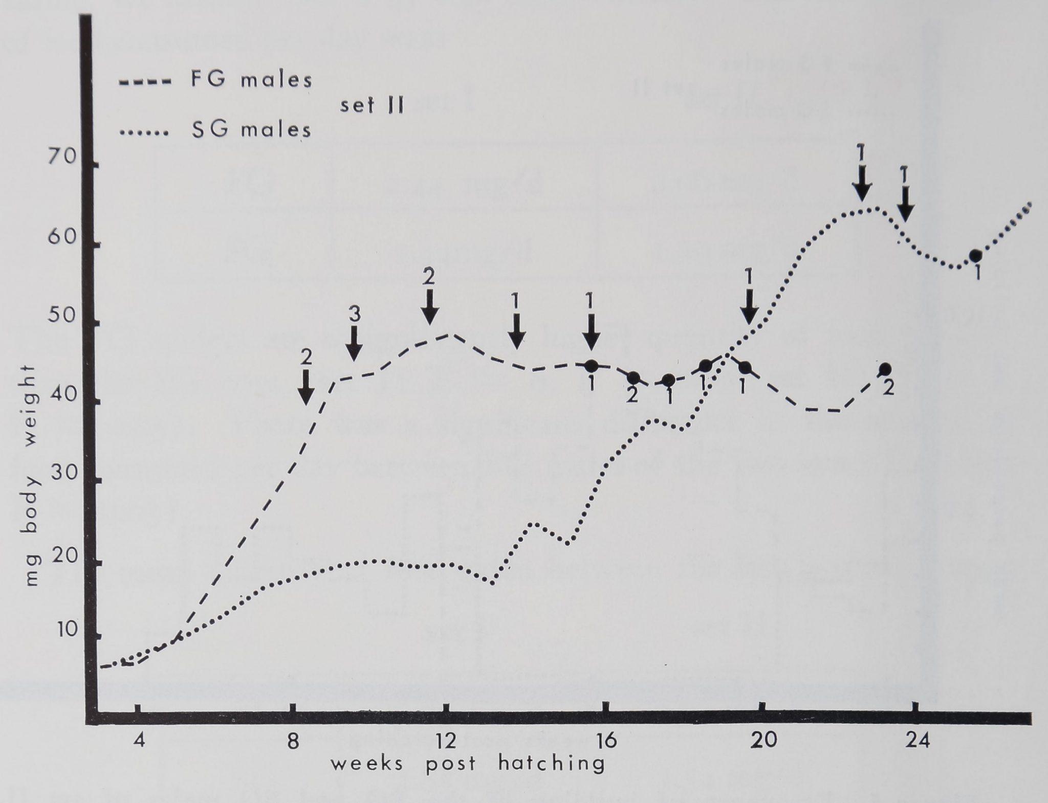 1973-BodyWebBuildingAnd-4
