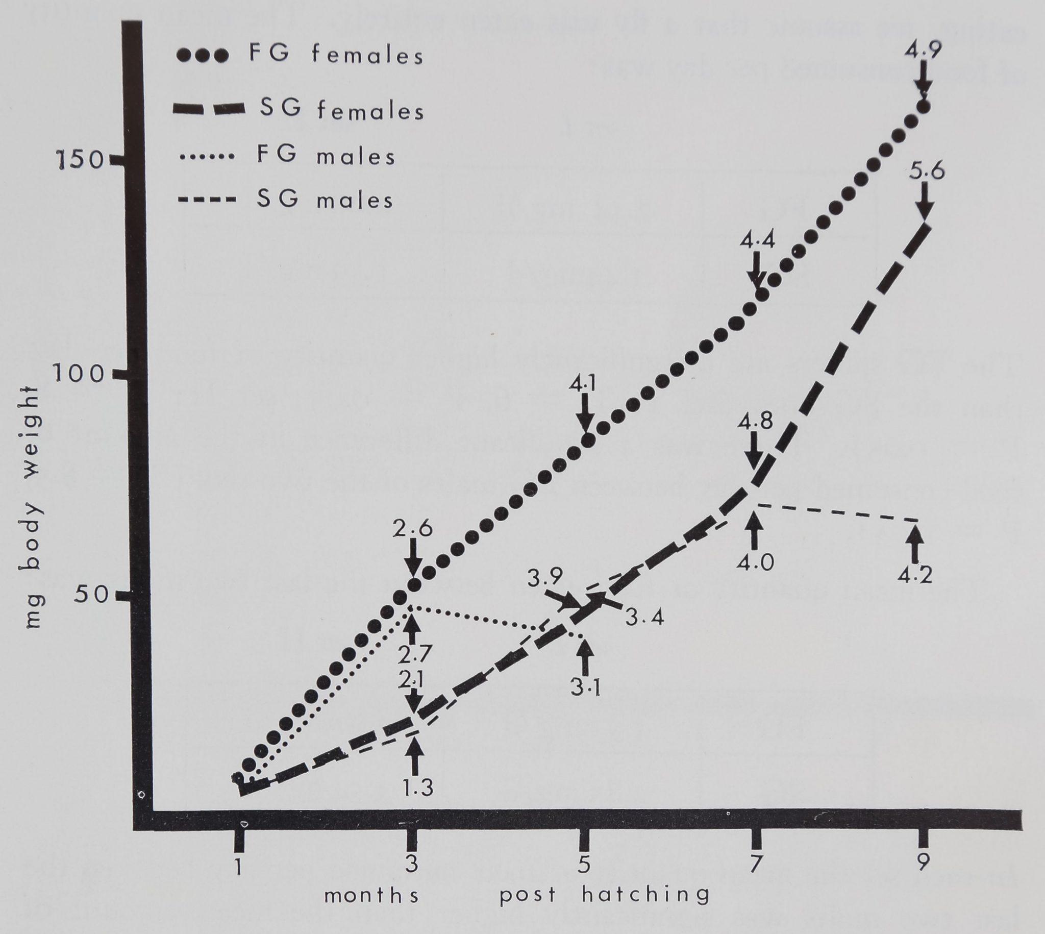 1973-BodyWebBuildingAnd-6