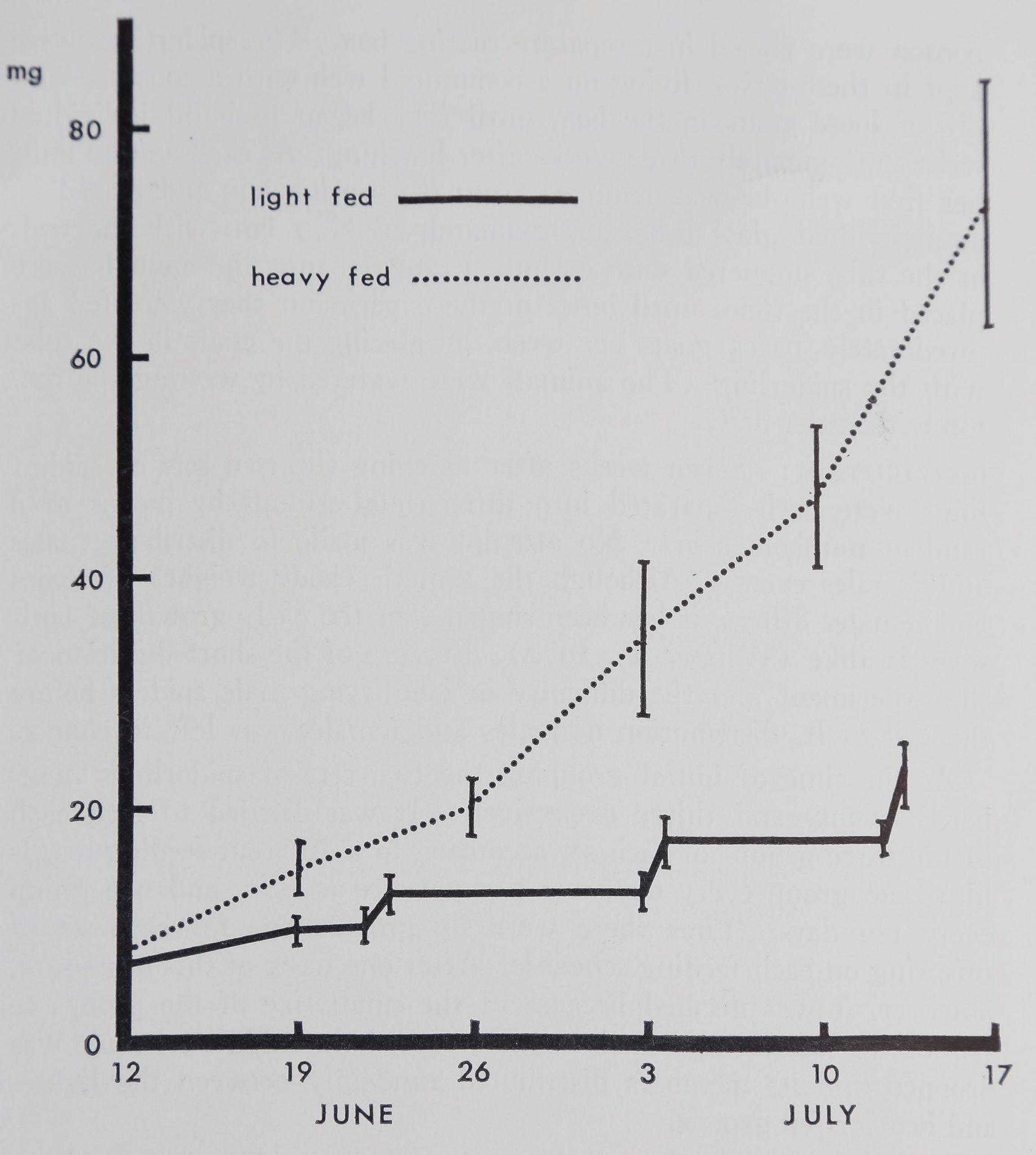 1973-GrowthOfTheOrbWeaver-1