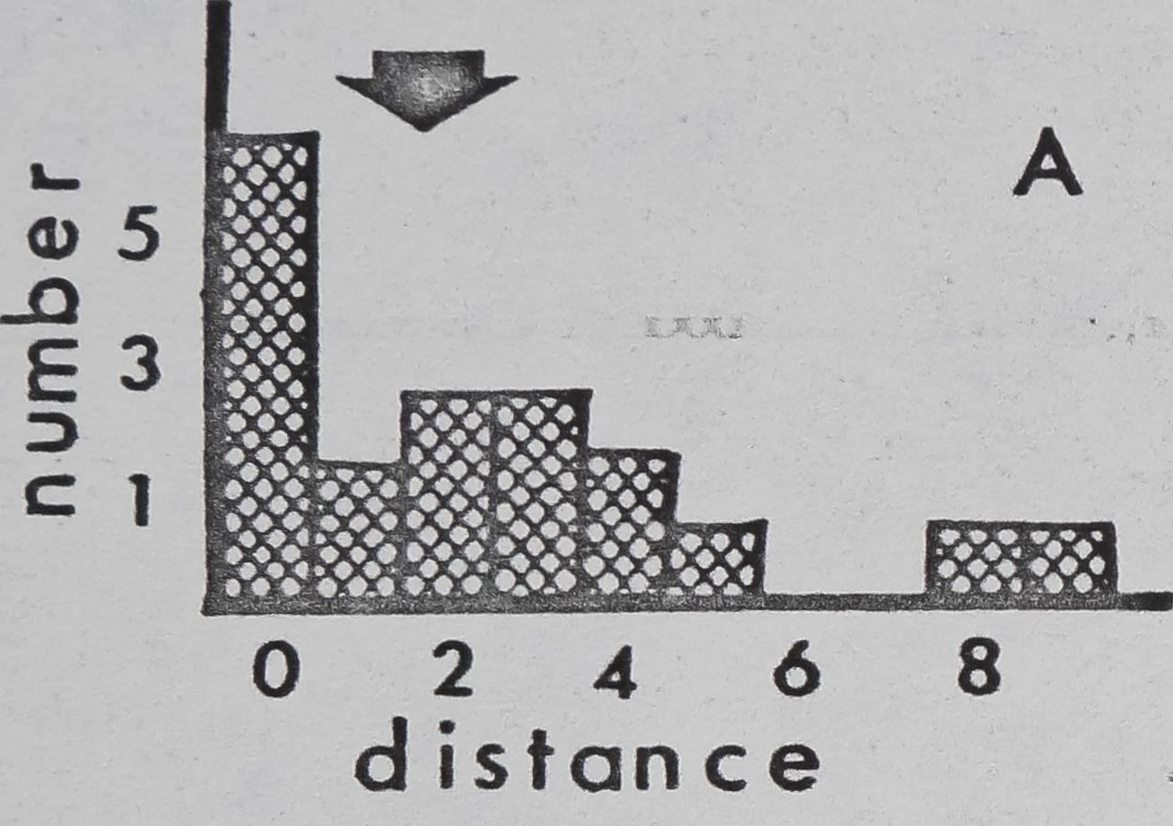 1979-ComparativeStudiesOfDictynaAnd-6