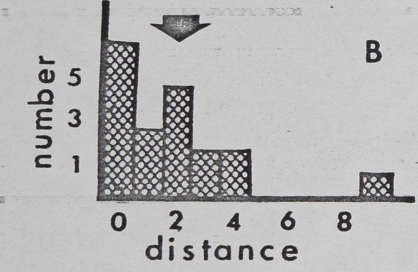 1979-ComparativeStudiesOfDictynaAnd-7