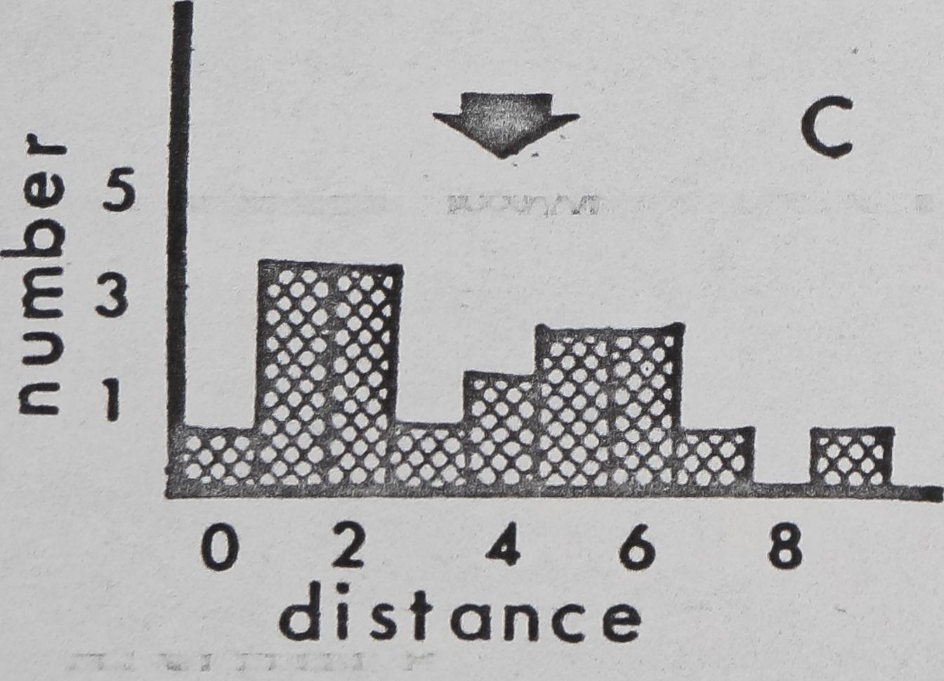 1979-ComparativeStudiesOfDictynaAnd-8