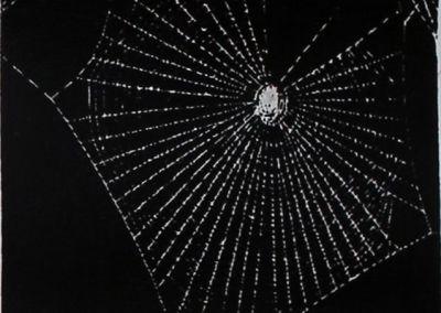 1955-Ein-Spinne-1