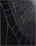 1949 Experientia- Peter N Witt