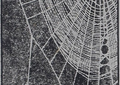 1949 Spiders Slightly Drunk - Peter Witt